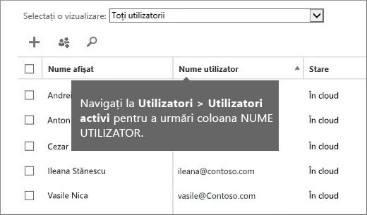 Coloana Nume utilizator din centrul de administrare Office 365