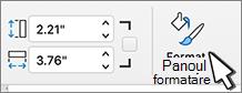 Butonul formatare panou selectat