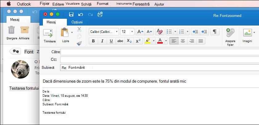 Outlook pentru Mac 2011 - Dimensiune font