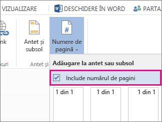 Imaginea casetei de selectare de bifat pentru a include numărul de pagini cu numerele paginilor într-un document (pagina X din Y).