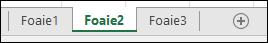 Imagine cu file de foi de lucru Excel