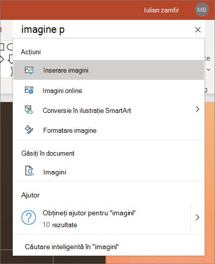 Caseta de căutare din acțiunea din PowerPoint cu imaginile care sunt căutate,