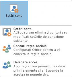 Captură de ecran cu adăugarea unui delegat în Outlook