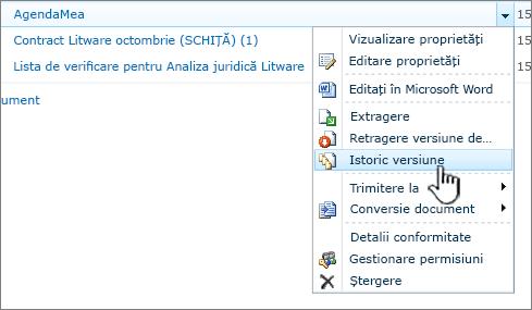 Meniul vertical de document cu Istoricul versiunilor evidențiată