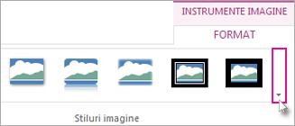 """Pentru a vedea mai multe stiluri de borduri, faceți clic pe butonul """"Mai multe""""."""