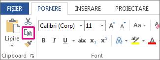 Butonul Copiere pe fila Pornire