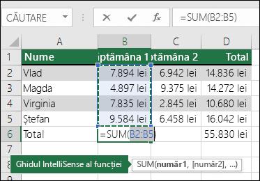 Celula B6 arată formula de sumă Însumare automată: =SUM(B2:B5)