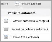 Opțiuni de potrivire automată iPad