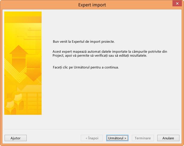 Expertul de import proiecte