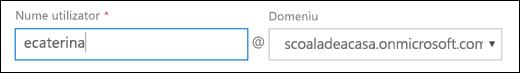 Captură de ecran a adăuga un utilizator în Office 365, afișând câmpurile Nume de utilizator și domeniu.