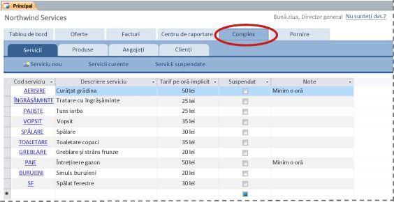 Fila Complex din șablonul pentru baze de date Servicii