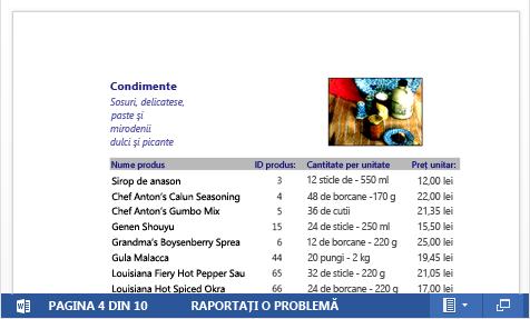 Un fișier PDF încorporat al unui catalog de produse afișat în Word Web App