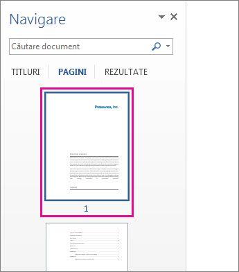 Imagini reduse ale paginilor din Panoul de navigare