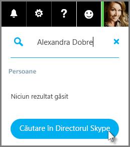 Faceți clic pe Căutare în Directorul Skype