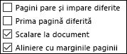 Opțiuni Antet și subsol în caseta de dialog Inițializare pagină