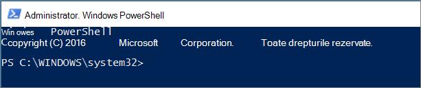 Cum arată PowerShell atunci când îl deschideți prima oară.