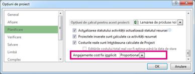 Fila Planificare în caseta de dialog Opțiuni Excel