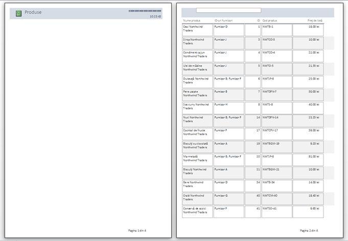 examinarea paginilor raportului, având aplicat sfârșituri de pagină