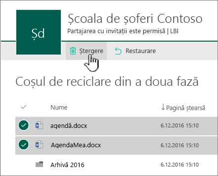 Reciclarea de nivel 2 SharePoint Online cu butonul Ștergere evidențiat