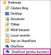 Folderul OneDrive pentru business