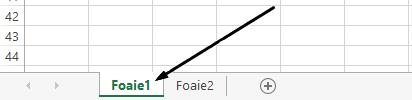 Filele de foaie de lucru Excel sunt în partea de jos a ferestrei Excel.
