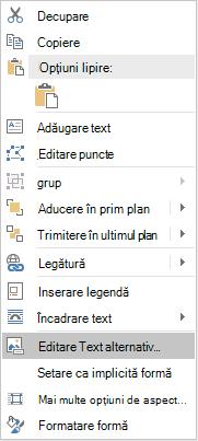 Meniul Word Win32 editare Text alternativ pentru forme