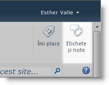 Butonul de etichetare socială pentru o pagină
