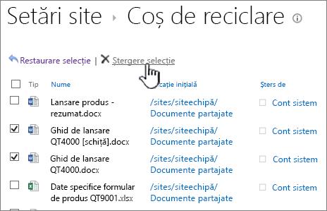 Butonul de ștergere a Coșului de reciclare SharePoint 2013 2nd Level