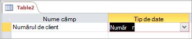 Primul nume de câmp și tipul de date al unui tabel Access nou