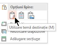 Sub Opțiuni lipire, selectați prima opțiune, utilizare temă destinație