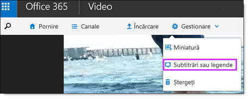 Subtitrari video Office 365