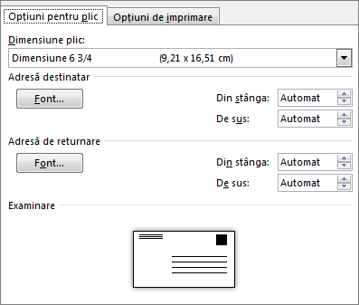Fila cu opțiunile pentru plic pentru setarea dimensiunii plicului și a fonturilor pentru adresă