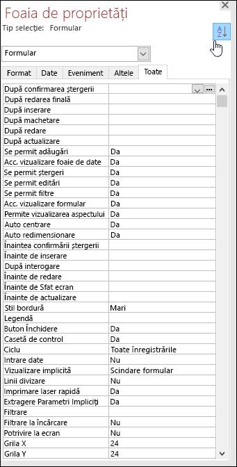 Captură de ecran cu foaia de proprietăți Access, cu proprietățile sortate în ordine alfabetică