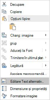 Meniul text alternativ editare Excel Win32 pentru imagini