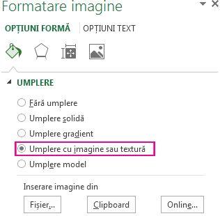 Butonul de umplere cu imagine sau textură din panoul Formatare imagine