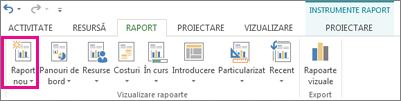 Butonul Raport nou de pe fila Raport