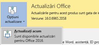 Pentru cea mai recentă versiune de Office 2016, faceți clic pe Opțiuni actualizare, apoi actualizați acum.