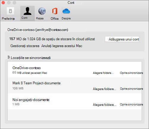 Captură de ecran de pe fila cont clientul de sincronizare OneDrive pentru Mac