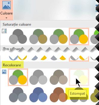 Pe fila Instrumente imagine - Format din panglica barei de instrumente, selectați Culoare. Sub Recolorare, selectați Estompat.