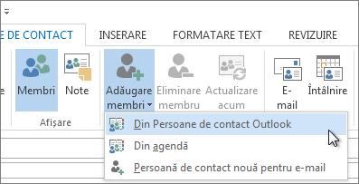 Adăugare membri Din persoanele de contact Outlook