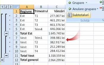 Comanda Subtotaluri grupează datele într-o schiță