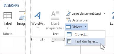 Meniul obiect în grupul Text