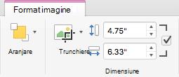 Butonul Trunchiere și casetele Înălțime formă și Lățime formă pentru imagini în panglica Office 2016 pentru Mac