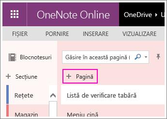 Captură de ecran cu adăugarea unei pagini din OneNote Online.