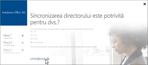 Alegeți Următorul pentru a continua configurarea sincronizării directorului