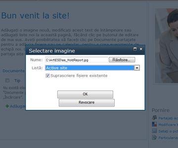 Adăugarea unei imagini la un site