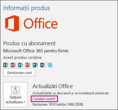Informațiile despre contul de produs pentru abonamentul Office 365 Business din canalul Curente
