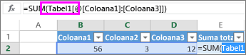 Numele tabelului apare în formule