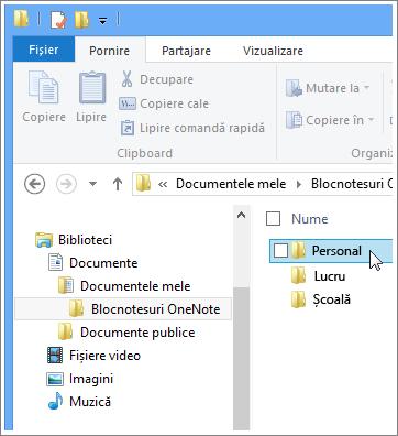 Navigarea la folderele OneNote în Explorer