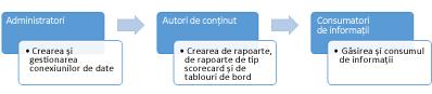 Administratorii, autorii de conținut și consumatorii de informații pot folosi un site Centru BI